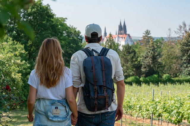 Sächsischer Weinwanderweg | Etappe 6 Von Meißen bis Diesbar-Seußlitz | Wandern in Sachsen | Region Dresden-Elbland 13