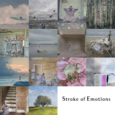 Stroke of Emotions by Sara Harley