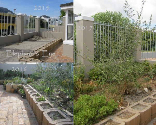 Karoo Koppie 2015 to 2017