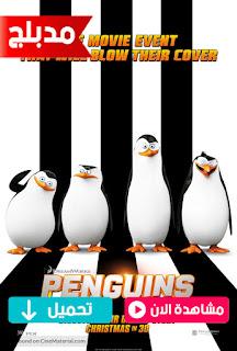 مشاهدة وتحميل فيلم بطاريق مدغشقر Penguins of Madagascar 2014 مدبلج عربي
