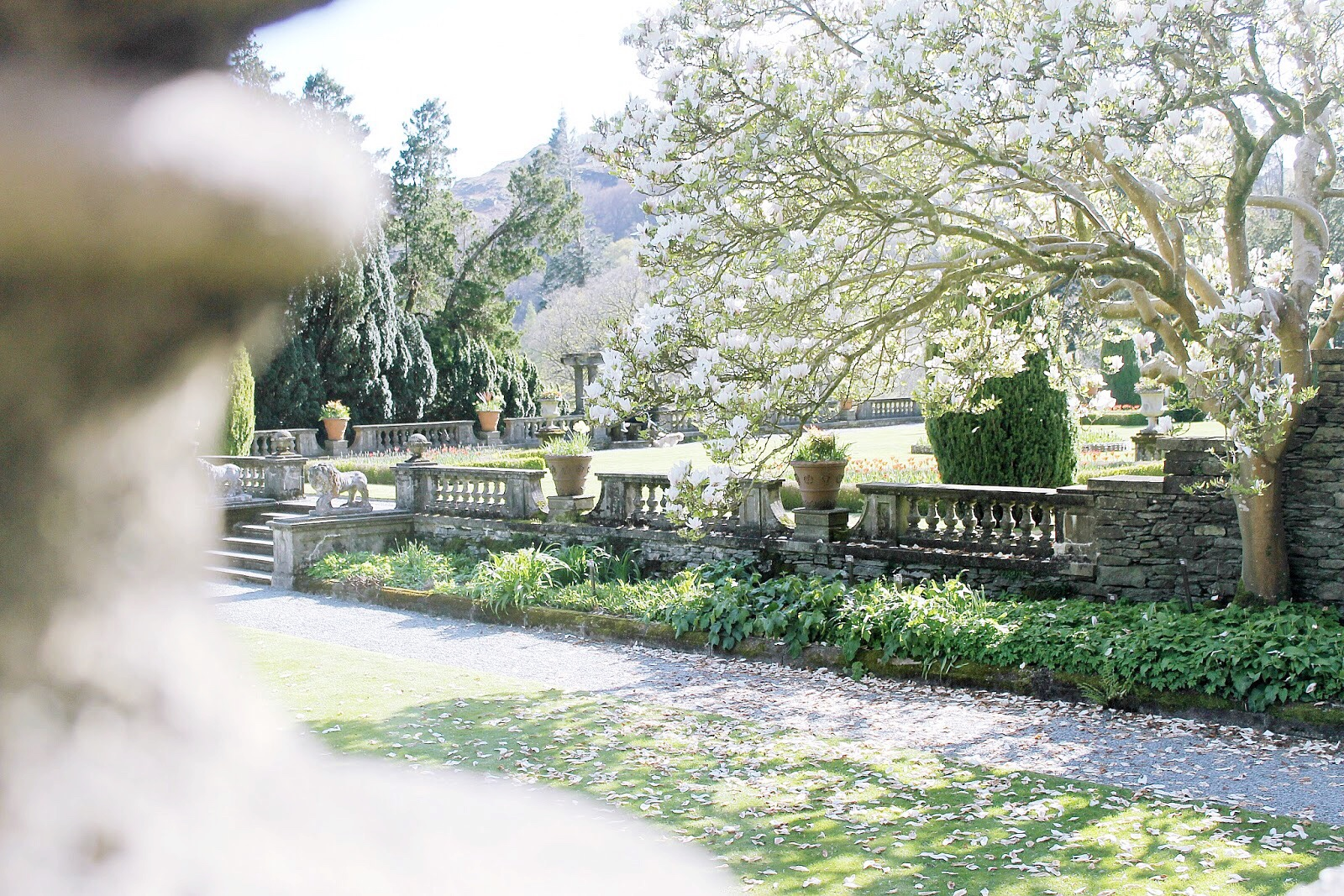 Rydal hall and gardens visit