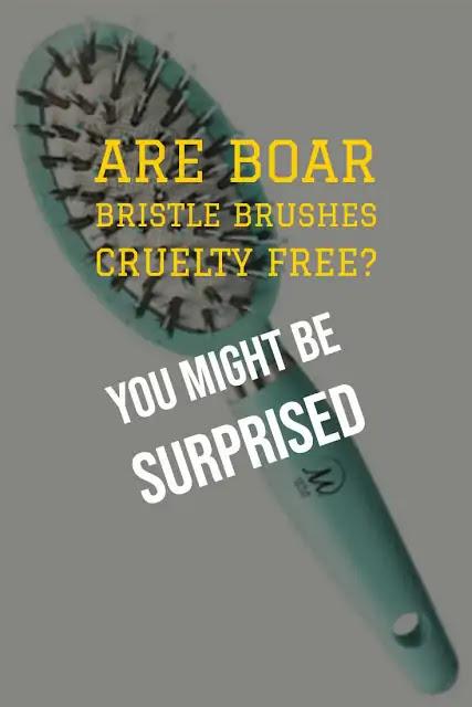 Are boar bristle brushes cruelty free