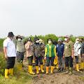 Komisi IV Tinjau Pemulihan Ekosistem Mangrove di Cagar Alam Pulau Dua