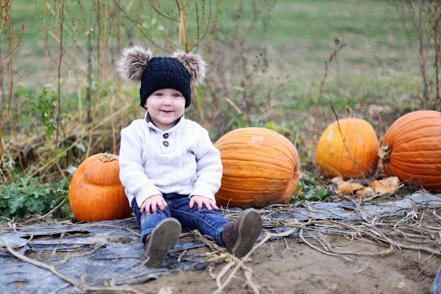 pumpkin patch photography