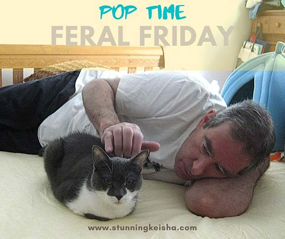 Feral Friday: Pop Time