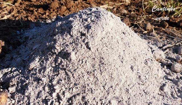 As vantagens da aplicação de cinza na agricultura