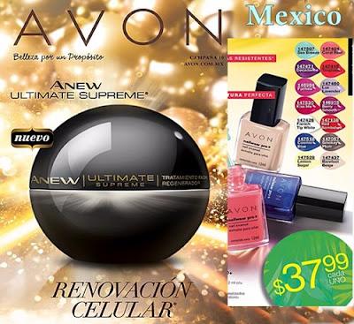 Cosmeticos Avon C-10 2016