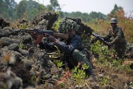 Dozens killed as Ugandan forces battle militia - AOL News