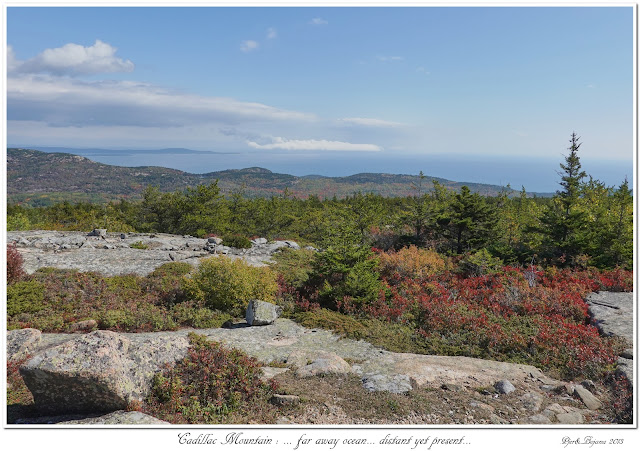 Cadillac Mountain: ... far away ocean... distant yet present...