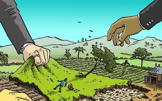 Chỉ đóng 50% tiền sử dụng đất khi cấp sổ đỏ trong trường hợp?