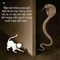 Hiệu ứng Rắn Hổ Mang - Cobra effect
