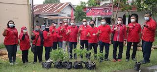 Rangkaian HUT ke-48, DPC PDI Perjuangan Medan Tanam Seribu Pohon di Sepanjang Sungai Deli