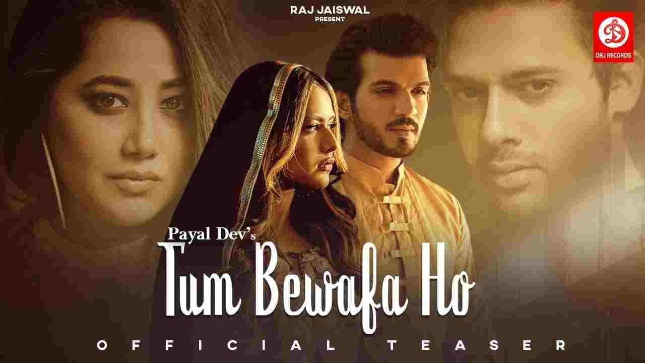 Tum bewafa ho lyrics Payal Dev x Stebin Ben Hindi Song