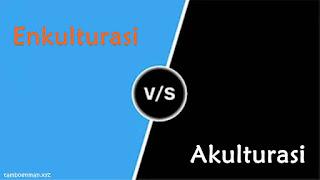Perbedaan Antara Enkulturasi dan Akulturasi
