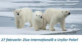 27 februarie: Ziua Internațională a Urșilor Polari
