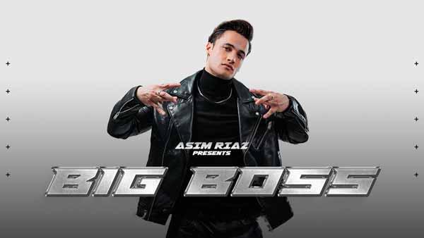 big boss asim riaz lyrics