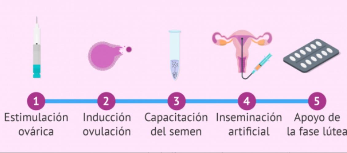 endometrio atrofico cosa significa