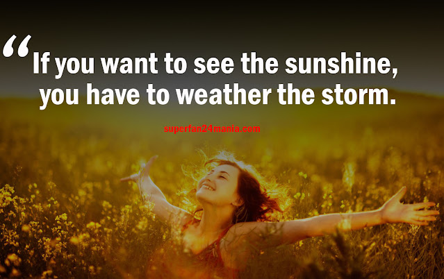 If you want to see the sunshine, you have to weather the storm.