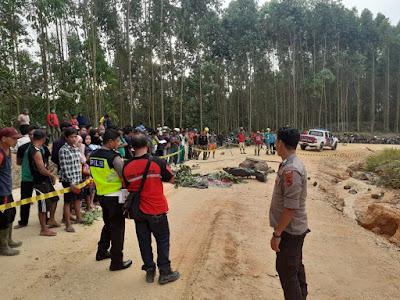 Lindas Pedagang Durian Hingga Tewas, Sopir Tronton PT TMA Kabur