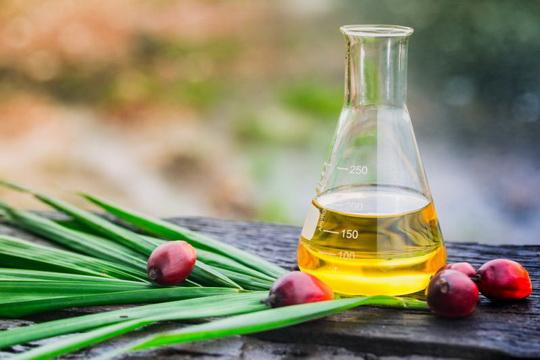 Пальмовое масло - ЯД!  Как узнать, есть ли оно в продукте?