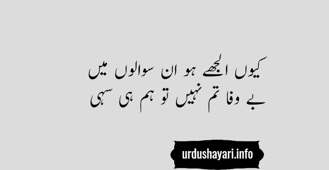urdu shayari on bewafa boyfriend - two lines image poetry for status