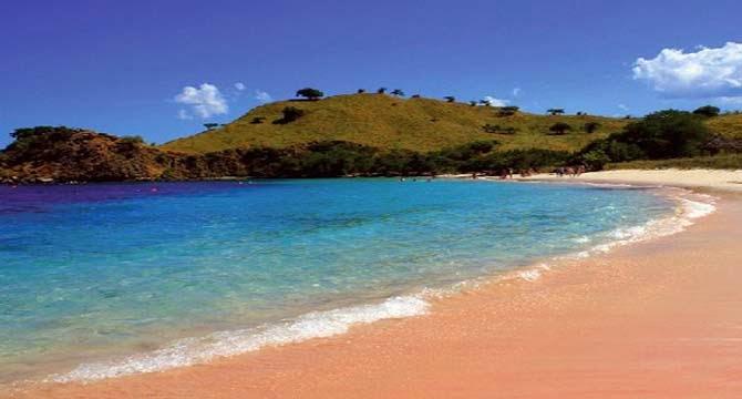 Pantai pink beach lombok