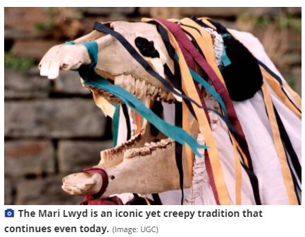 Mari Lwyd The Mysterious Welsh Tradition