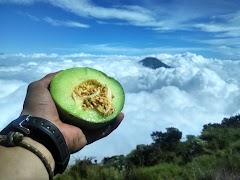 Keren! Pendakian Santai Gunung Sumbing Via Bowongso