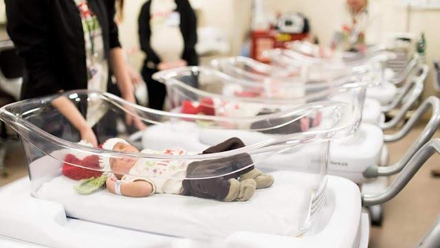 Continúa escándalo en adopción de recién nacidos armenios