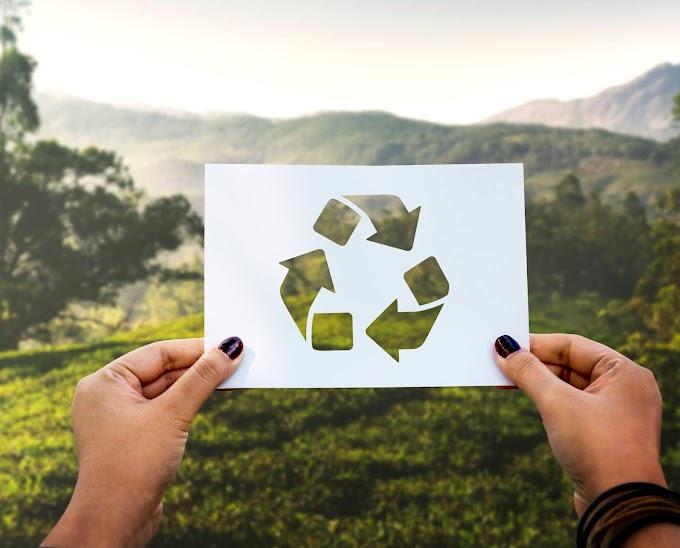 Práticas para tornar a sua rotina mais sustentável