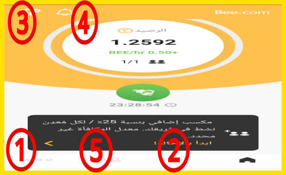 شرح تطبيق bee network