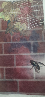 The Spider and the fly - class 8 -Read for pleasure- Sunbeam English Reader-iii-SCERT