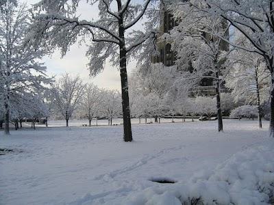 الشتاء يبدأ رسميًا الأثنين القادم