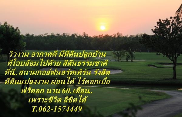 Hot โปรดี ฟรีดอก ที่ดินผ่อนได้ฟรีดอกนาน 60 เดือน T.062-1574449