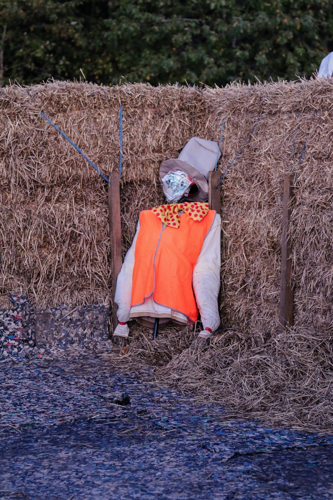 Close up photo of a scarecrow in the hay maze at M&Ds pumpkin patch