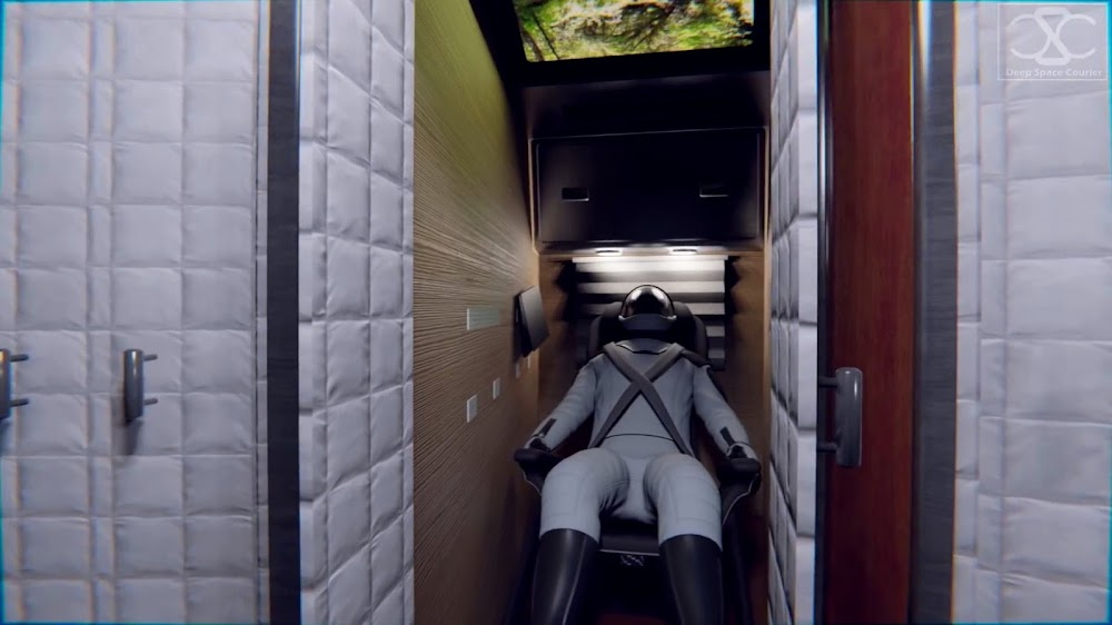 SpaceX's Starship interior concept by DeepSpaceCourier - Sleeping cabins