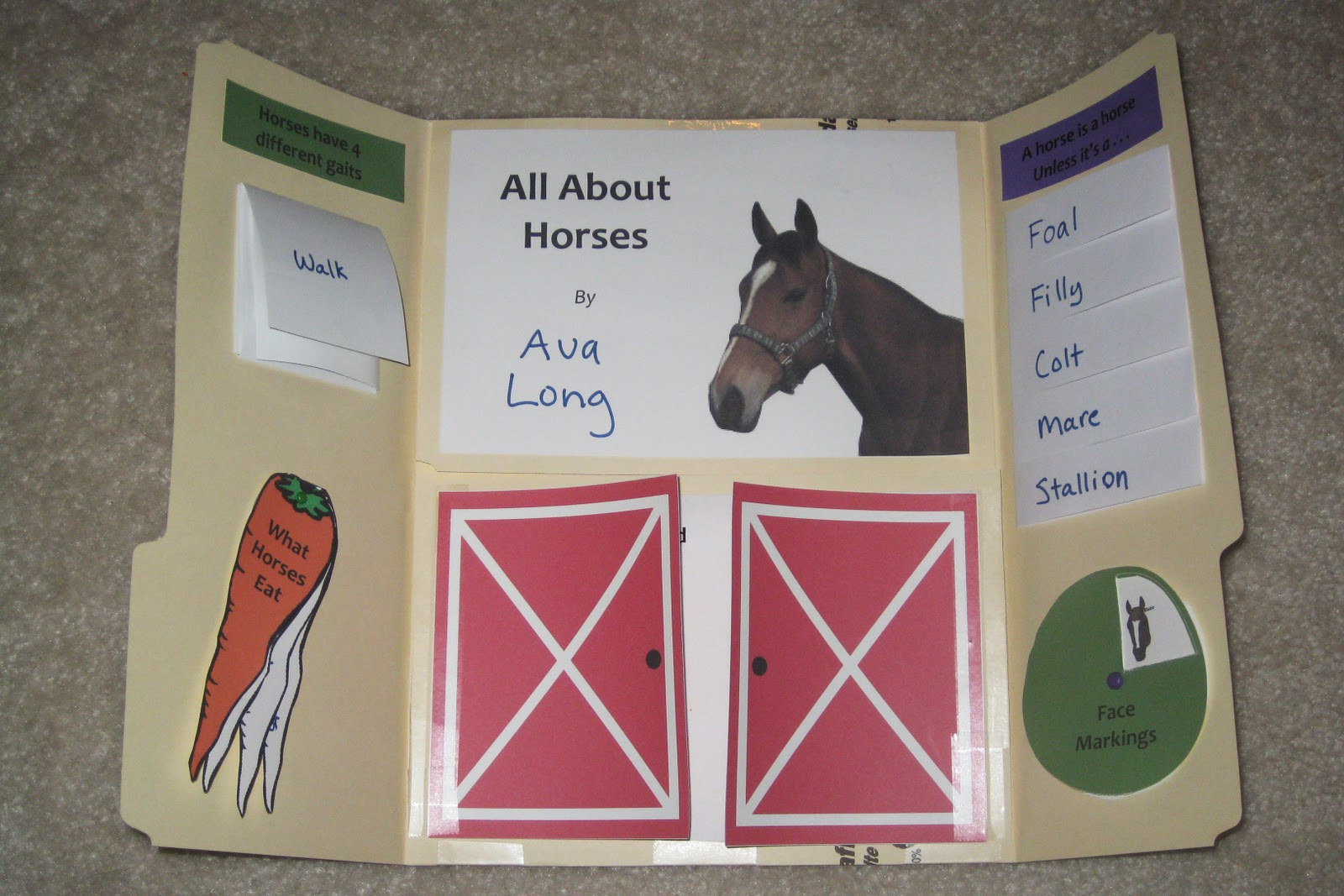 Homeschooling In Heels All About Horses Lapbook