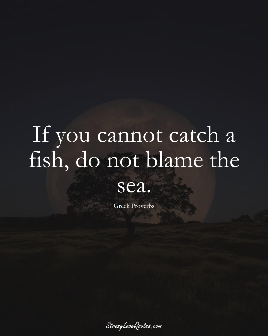 If you cannot catch a fish, do not blame the sea. (Greek Sayings);  #EuropeanSayings