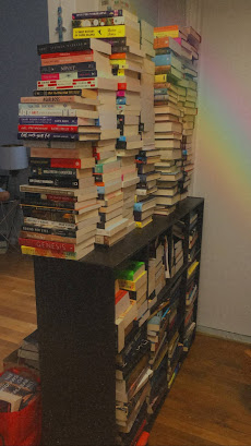 One Bookshelf before declutter