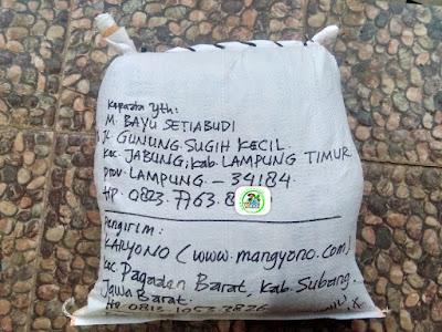 Benih pesanan M. BAYU S, Lamtim, Lampung..   (Setelah Packing)