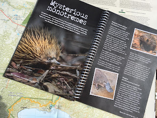 The guidebook for the Kangaroo Island Wilderness Trail is very informative about wildlife along the trail. The 1:35 000 topographic map is well detailed.