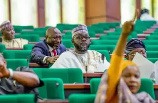 House of Representatives criticise FG's decision on school reopening