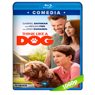Think Like a Dog (2020) Full HD 1080p Latino