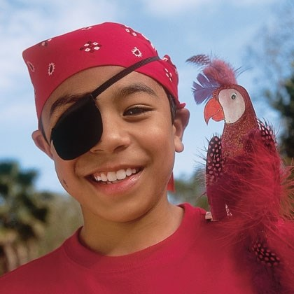 A Parrot for a Pirate
