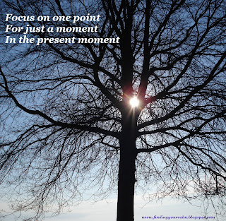 Image of the sun shining through a tree in a perfect circle with text: Focus on one point for just a moment in the present moment.