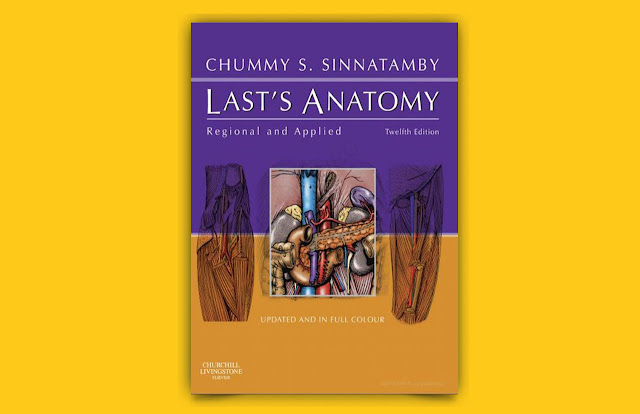 Download Last's anatomy regional and applied 12th edition PDF for free; leg muscles;