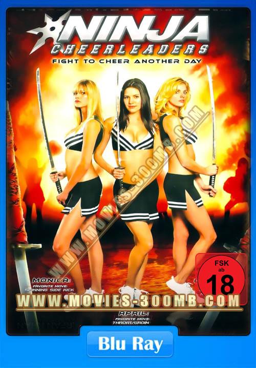 Ninja Cheerleaders 2008 480p BluRay x264 Poster