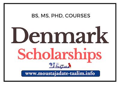 المنح الدراسية الدنماركية 2021: نافذة المنح الدراسية الدنماركية مفتوحة الآن! لجميع المستويات
