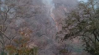 Koramil Manggelewa Padamkan Kebakaran Hutan Desa Nanga Tumpu