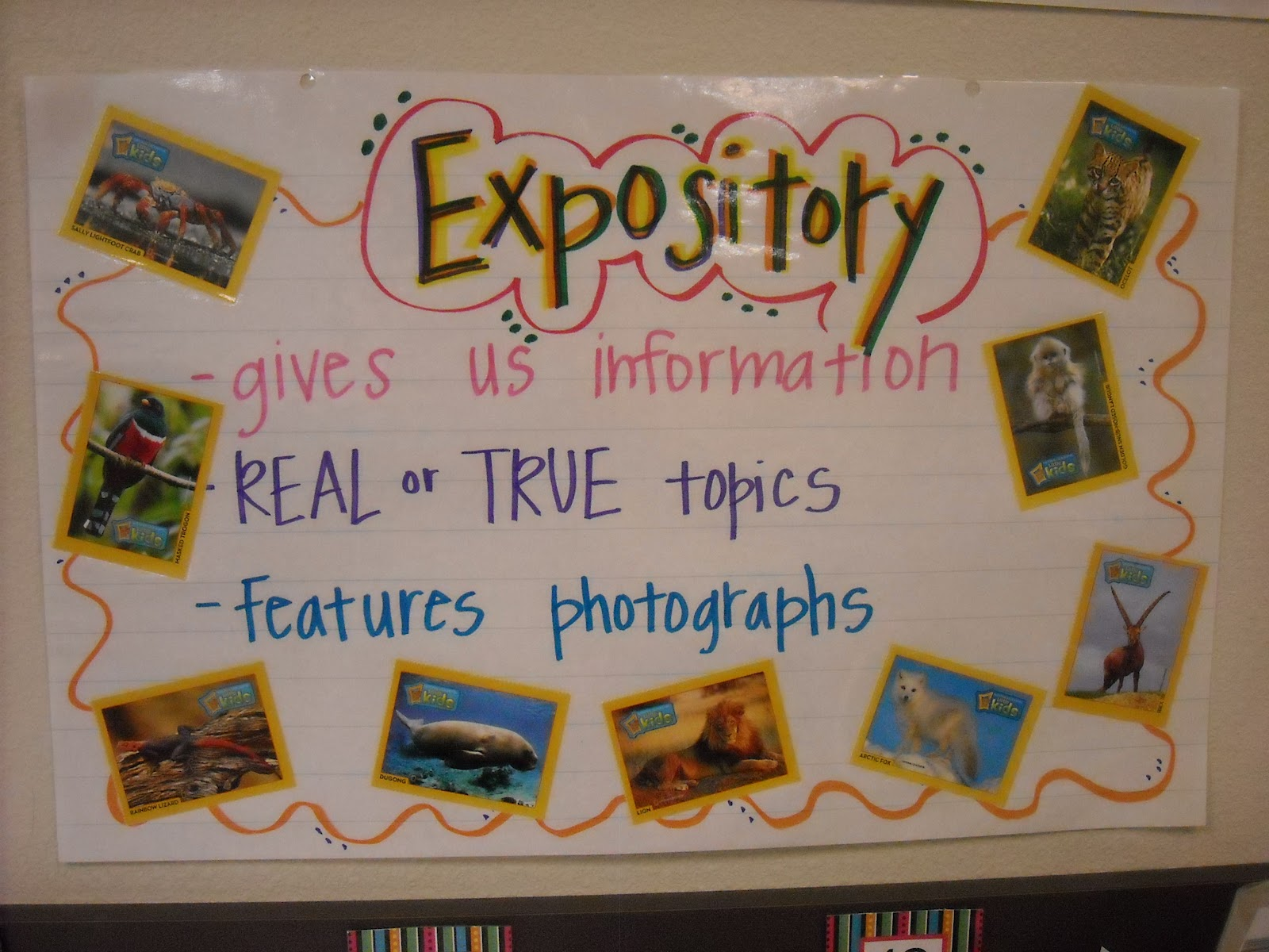 umbrella for expository writing anchor charts